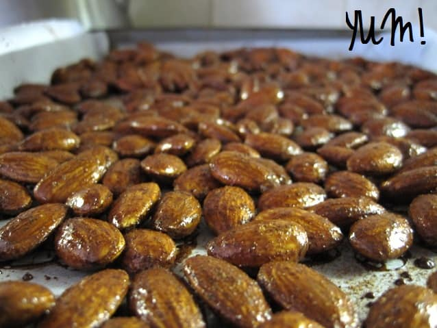 Gingerbread Roasted Almonds | My Sequined Life