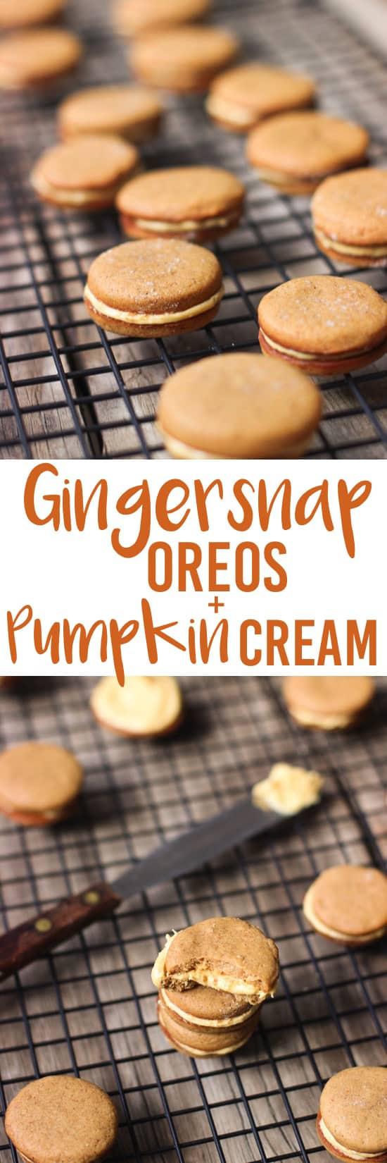 Gingersnap Oreos with Pumpkin Cream | mysequinedlife.com