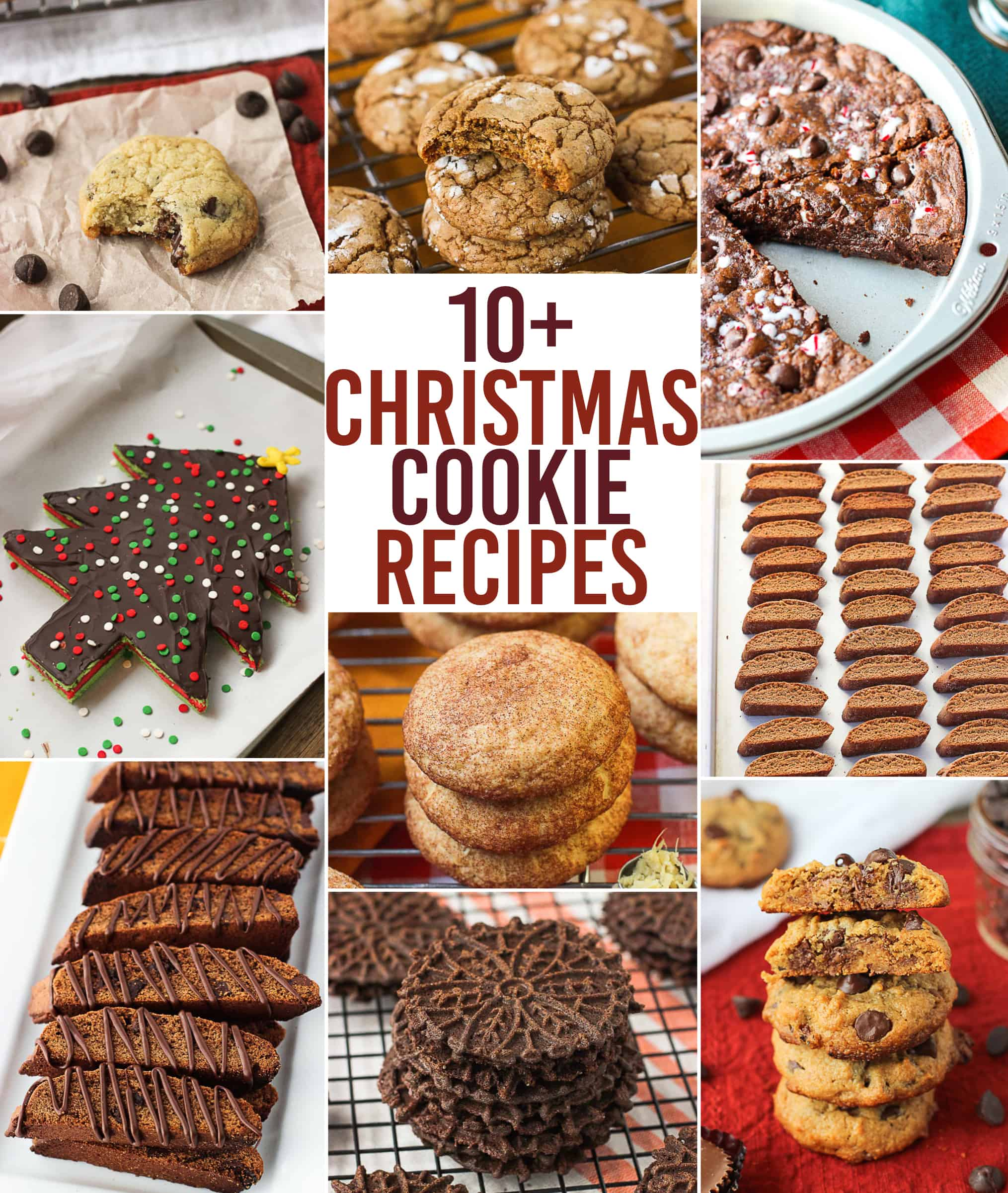 A collection of 10+ Christmas Cookie Recipes just perfect for the holiday season! Traditional cookies, new spins on old favorites, and even cookie cakes!