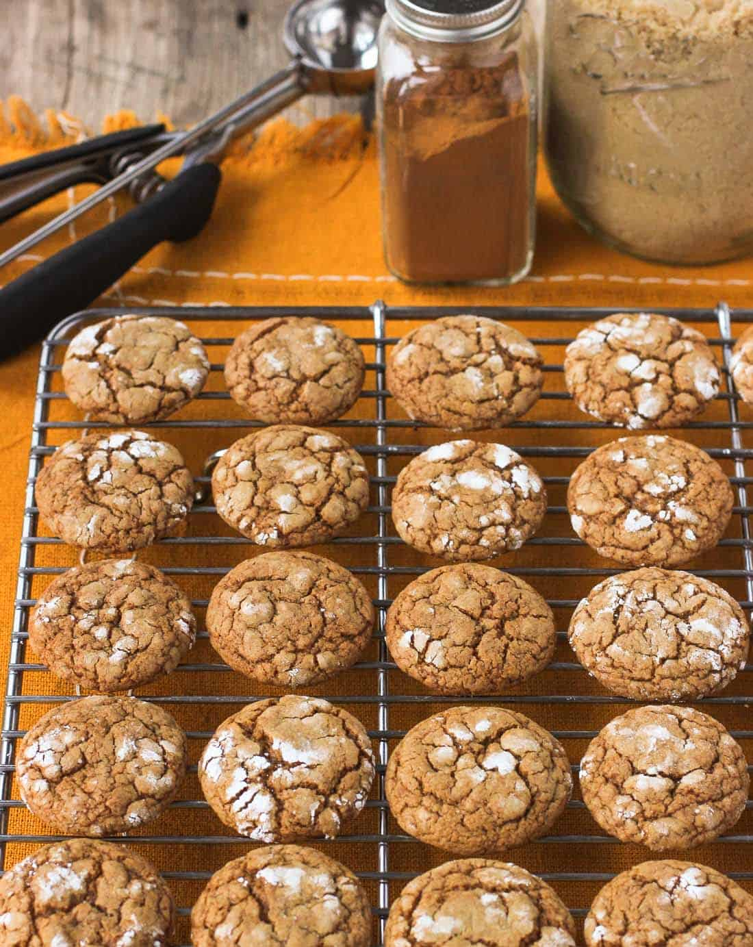 These pfeffernusse are chewy spice cookies rolled in powdered sugar that are perfect for the holidays! mysequinedlife.com
