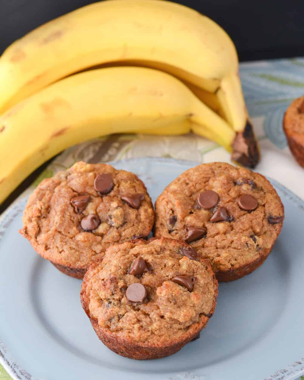 Chocolate Chip Coconut Flour Banana Bread Muffins - Jess Fuel