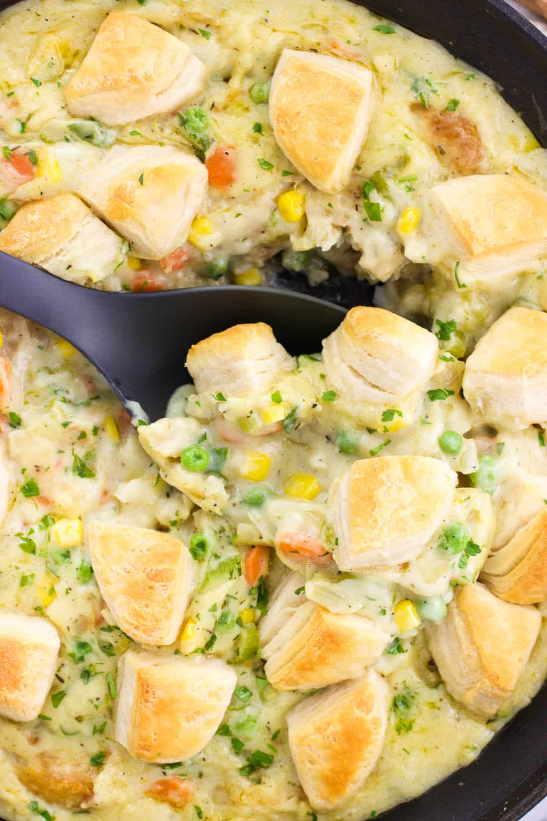 This creamy fish pot pie features warm spices and comes together in a skillet with a biscuit topping for a meal fit for weeknights or weekends alike. The whole family will love this easy pot pie recipe!